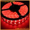 luz de tira de 24V LED 5050 RGB