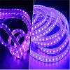 높은 Lumen Purple Color IP65 Waterproof Dimmable Floor Light Flexible LED Strip Lights 220V