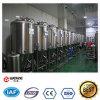 matériel de cuves de fermentation de bière du fermenteur 5bbl de la brasserie 500L