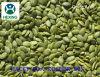 Семена тыквы Hexing-Китая органические ранг AAA стерженей кожи шелушили/Shine