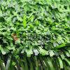 인공적인 플랜트 정원 잔디 담을 정원사 노릇을 하는 정원