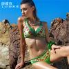 Bikini-Badebekleidungs-Unterwäsche 2015