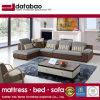 Novo design de móveis domésticos tecido moderno sofá (FB1121)