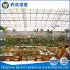 Invernadero de cristal del invernadero para el restaurante