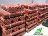 Rouleau direct de convoyeur d'industrie d'amont
