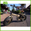 脂肪質のタイヤ浜の雪の電気バイクを折る20  48V 500W
