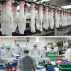 Guantes de examen de la máquina de producción