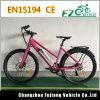 Vélo 250W électrique léger de modèle neuf avec la crémaillère arrière