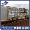 الصين تصميم [هيغقوليتي] فولاذ [شكن هووس] /Farm يبني/دواجن حظيرة