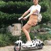 Nuevo diseño 2017 plegable la bici eléctrica de la motocicleta de la vespa del triciclo eléctrico con Ce