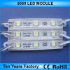12V impermeabilizzano il modulo di SMD 5050 LED