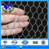 電流を通された六角形ワイヤー網の鶏の網