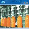 El jugo puede la máquina del relleno en caliente (DGF18-18-6)