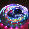 LED Lighting SMD5050 Full Color Pixel Addressable LED Strip