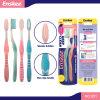 Toothbrush adulto com as cerdas delgadas & macias 2 em 1 bloco 851 da economia