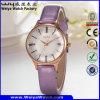 Wristwatch повелительниц кварца кожаный планки способа оптовый (Wy-098B)