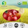 Polvere del succo di mele/polvere del succo mele di alta qualità/buona polvere istante del succo di mele della polvere spremuta di gusto