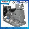 ¡Fuente verde, venta caliente! conjunto de generador del gas del motor de 250kw Deutz