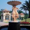 Мраморный фонтан шара крана (FNT082)