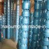 Pompe à eau à puits profond submersible vertical multi-étages (QJ)