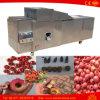 100kg en acier inoxydable Date Olive Pitter Machine Olive Pitting Machine