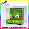 Caixa de exibição de papel de impressão verde