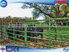 Крася стандартная панель Corral скотин ноги петли (FLM-CP-022)