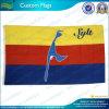 Kundenspezifisches Zeichen-dekorative Staatsflaggen (B-NF01F03043)