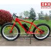 男性の電気自転車のためのリチウム電池が付いているマウンテンバイク
