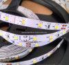 Precio TIRA DE LEDS luminosos de las vans