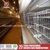 De Kooien van de Laag van het Ei van de Batterij van het Netwerk van de Draad van de Apparatuur van het Landbouwbedrijf van het gevogelte