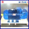 Tipo trifásico e assíncrono motor do motor de indução da C.A.