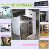 Diepvriezer de van uitstekende kwaliteit van de Ontploffing met Compressor Bitzer