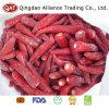 La nouvelle récolte Piment rouge congelée 5-11cm