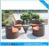 Rieten Eettafel van de Tuin van de vrije tijd de Openlucht (6423)