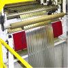 La précision de la Faucheuse à disque haute vitesse automatique machine à refendre