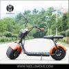 Силы надувательства рынка России самокат 1000W Citycoco Harley самой лучшей большой высокоскоростной