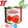 A10 3kg de tomates enlatados Conservas Vegetales Conservas