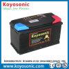 Standard libero di BACCANO della batteria di Automobiel di vendita VRLA di manutenzione calda del AGM 12V100ah