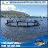 2017 projetou a gaiola de flutuação da piscicultura da cultura aquática
