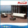 Sofà esterno del patio del giardino del salone della mobilia