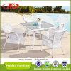 Tabella pranzante del giardino, Tabella pranzante impostata (DH-6068)
