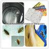 접착제 함정 독 접착제가 자유로운 해충 구제 살인자 비행 곤충에 의하여 비행한다