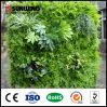 Sunwing mur artificiel en intérieur vert pour la décoration de supermarché