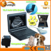 Machine vétérinaire Sun-806f d'ultrason de vétérinaire de la CE d'ultrason de mini ordinateur portatif avec la sonde rectale