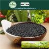 Fertilizzante organico di Biochar all'ingrosso la vendita calda