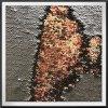 Ineinander greifensequins-Stickerei-Tullebodensequins-Stickerei für Kleid