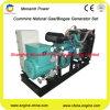 Conjunto de generador del gas natural de la potencia verde