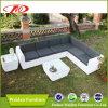 Resistente al UV Mobiliario de jardín sofá (DH-8350)