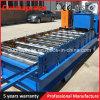 Gewölbte und Ibr doppelte Schicht-Dach-Panel-Rolle, die Maschine bildet